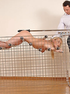 Bondage Pics with Tied Up Chicks